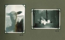 Hjalmars fotografialbum nr 2 sid 18 (22)