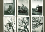 Hjalmars fotografialbum nr 3 sid 20 (28)