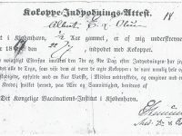 1867 Albert_E_L_Olsen-Vacinationsattest