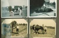 Hjalmars fotografialbum nr 1 sid 17 (28)