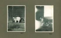 Hjalmars fotografialbum nr 2 sid 5 (22)