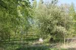 Oktorpsgårdens brunn finns ännu kvar på platsen. Maj 2011