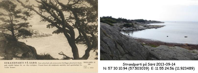 STF vykort nr 15 -Strandparti på Särö