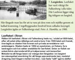 "Ur broschyren ""Gångstråk i Falkenberg"""